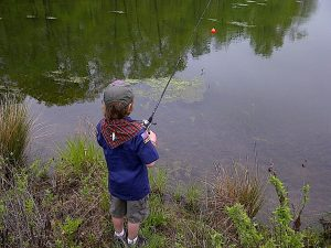 All You Need to Know About Lake Fishing for Beginners